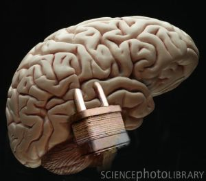 C0075622-Brain_Lock-SPL